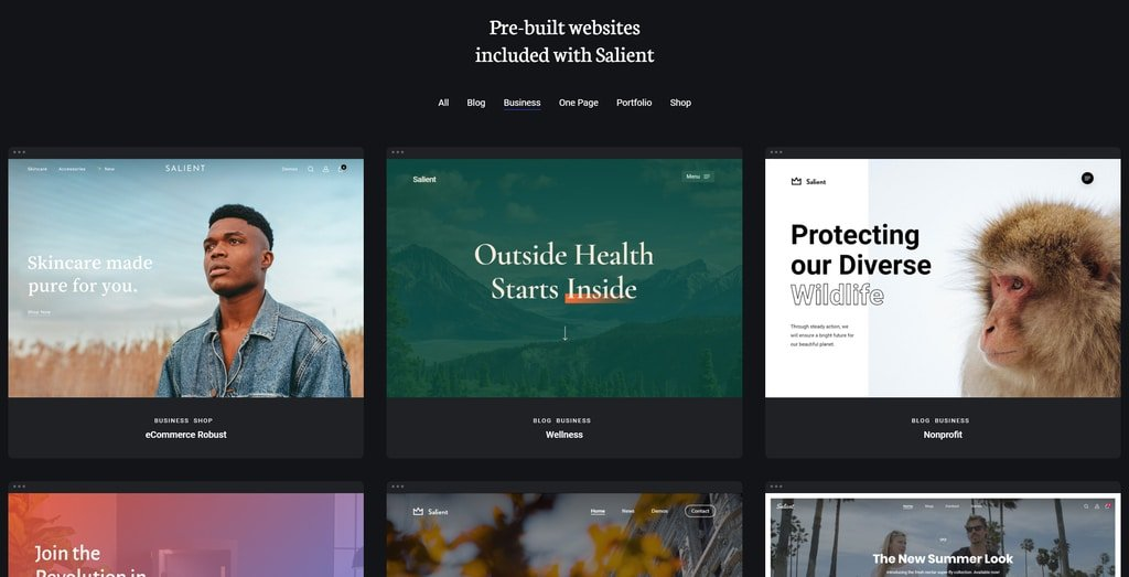 salient theme demos for small businesses