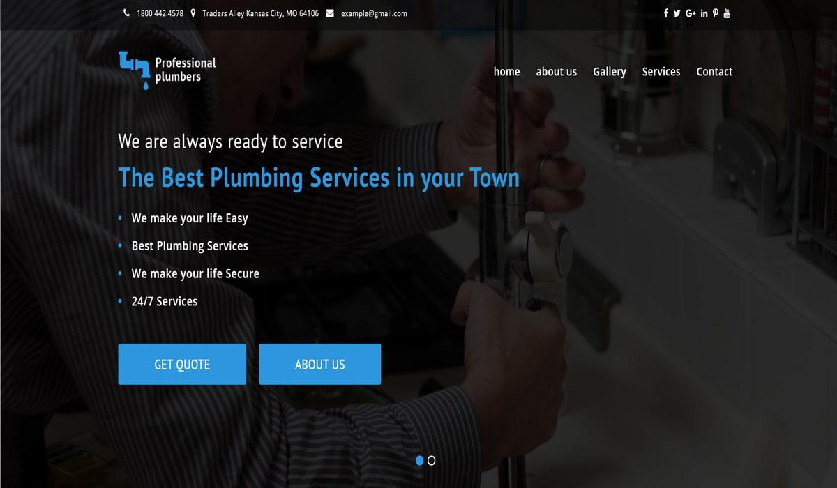 professional plumber free theme