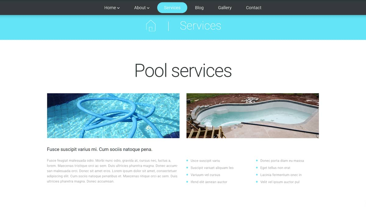 Demo Preview for Pool Cleaning WordPress Theme